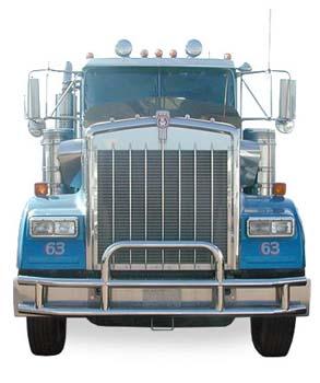 BLUE TRUCK CAB WITH BUMPER GUARD